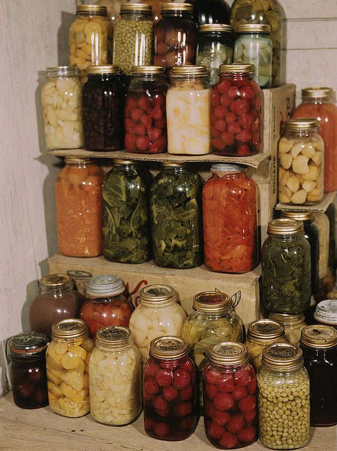 Canning for Newbies